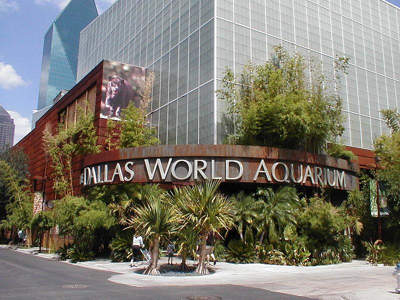 ダラス世界水族館